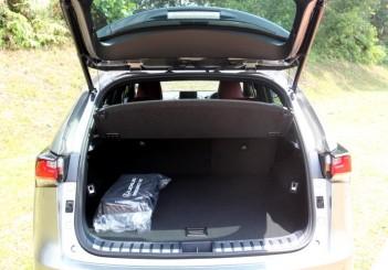 Lexus NX F Sport - 09