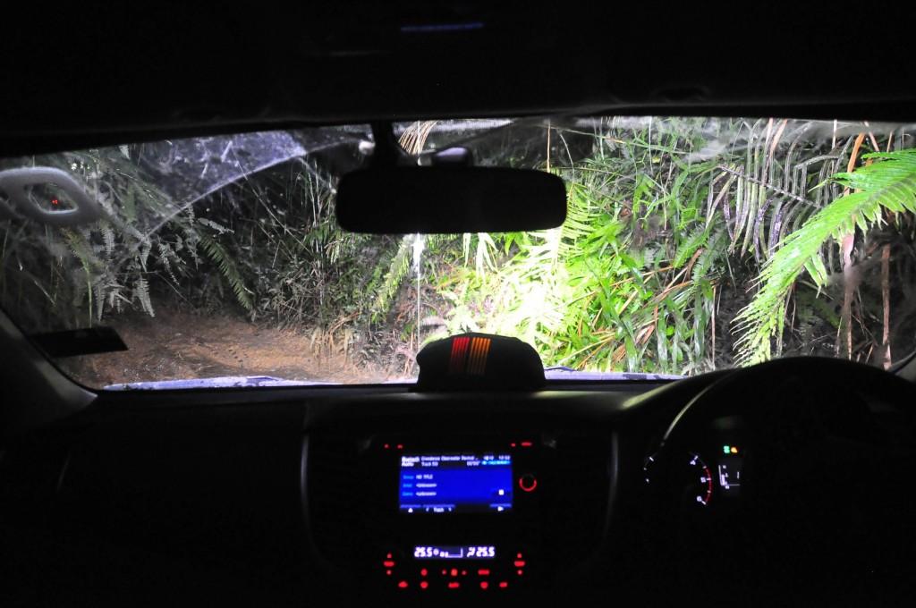 Mitsubishi Triton Borneo Safari (2016) - 92